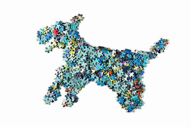 Hundetrainer Ausbildung - Puzzlehund symbolisiert Kombinationen