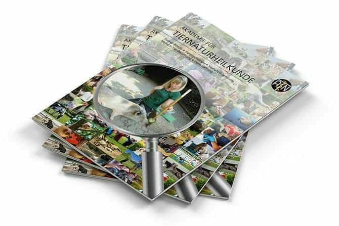 ATN Akademie - ATN Broschüre