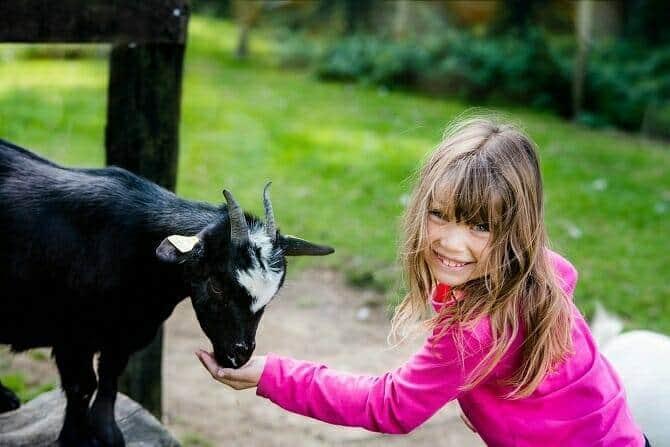 Erlebnispädagogik Ausbildung - Mädchen füttert Ziege