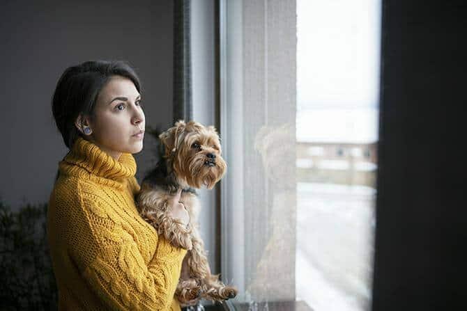 Heilpraktiker für tiergestützte Psychotherapie Ausbildung - Frau mit Hund blickt nachdenklich aus Fenster