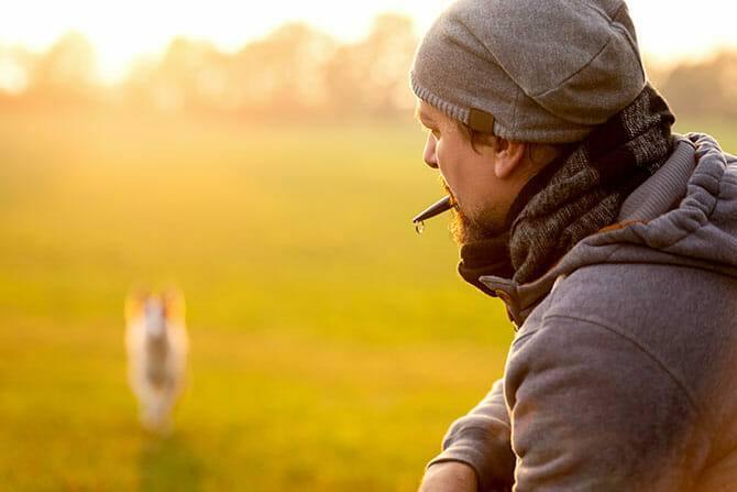 Hundetrainer Ausbildung - Hundetraining mit Hundepfeife
