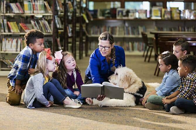 Therapiebegleithunde Trainer Ausbildung - Kinder in einer Bibliothek lesen gemeinsam mit einem Therapiebegleithund ein Buch