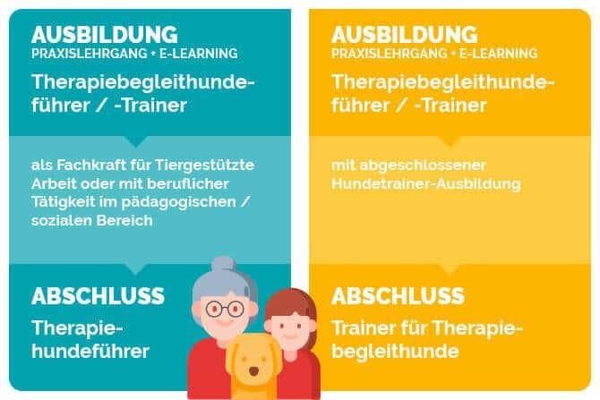 Therapiebegleithunde Trainer Ausbildung - Schaubild Ausbildung und Abschluss