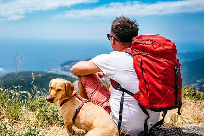 Tiererlebnis- & Eventtouristik Ausbildung - Mann mit Rucksack sitzt mit Hund im Sommer auf einem Berg