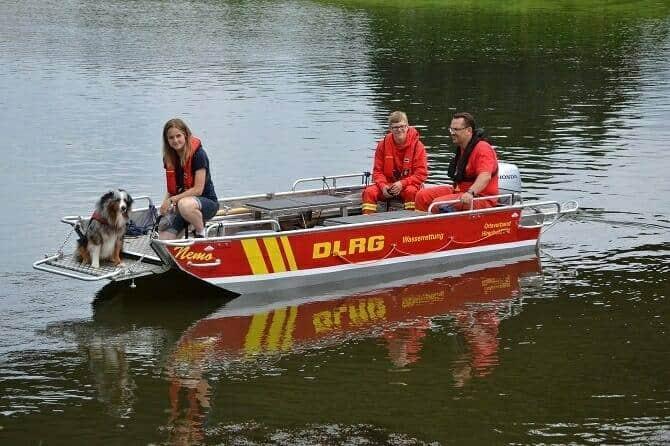 Sportwissenschaften Hund Ausbildung - Hund im DLRG Einsatz im Boot auf dem Wasser