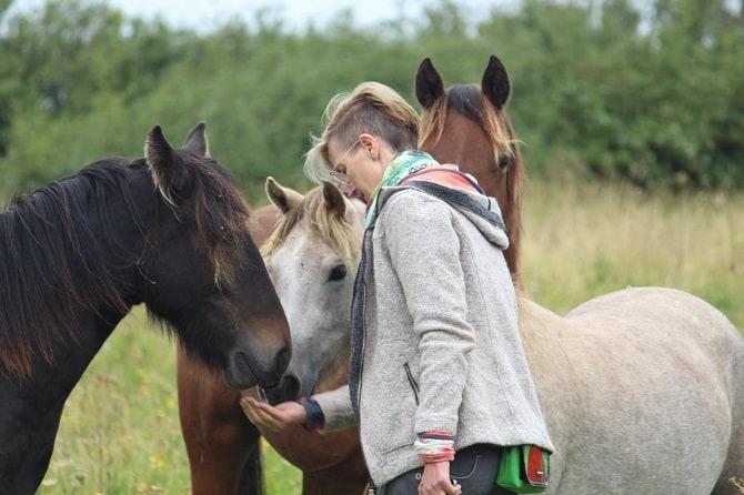 ATN Studienreise Irland Annabelle Steiger