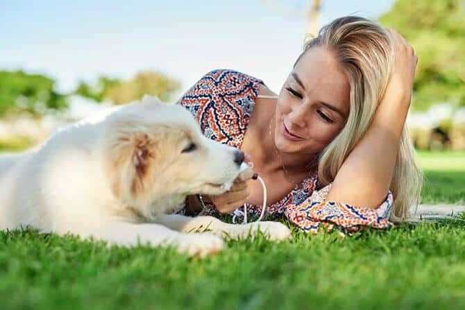 Hundetrainer Ausbildung Ablauf - Frau macht Pause mit Welpe im Gras