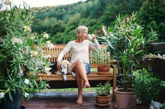 Psychologischer Coach Mensch Tier Beziehung Ausbildung - Seniorin mit Hund genießt Kaffee auf einer Bank in der Natur