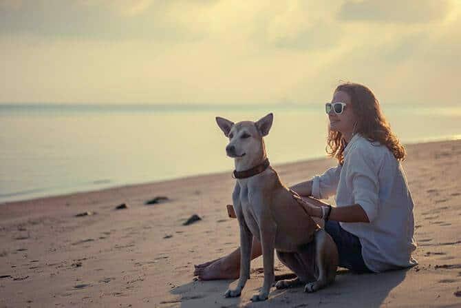 Tiererlebnis- & Eventtouristik Ausbildung - junge Frau sitzt mit ihrem Hund während des Sonnenuntergangs am Strand