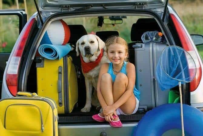Tiererlebnis- & Eventtouristik Ausbildung - junges Mädchen und ihr Hund sitzen mit Koffern im Auto für die Sommerferien
