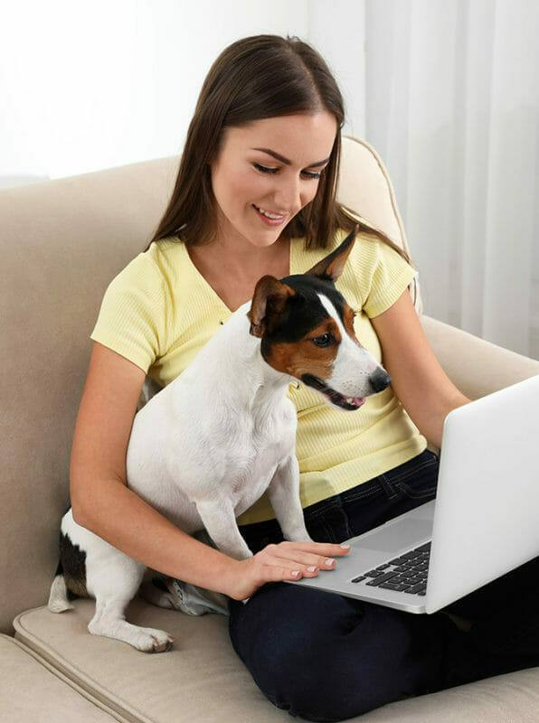 Hundetrainer Ausbildung Ablauf - Frau lernt mit Hund am Laptop zu Hasue