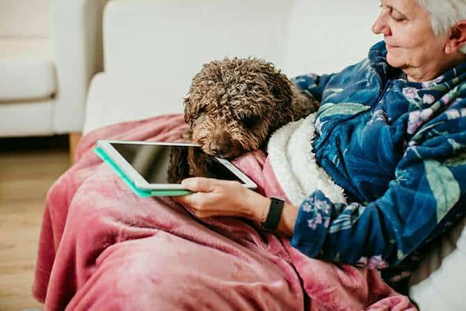 Heilpraktiker für tiergestützte Psychotherapie Ausbildung - Ältere Frau mit Decke und Hund schaut aufs iPad