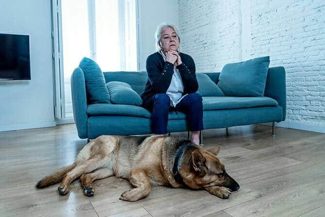 Heilpraktiker für tiergestützte Psychotherapie Ausbildung - depressive Frau und Schäferhund im Wohnzimmer