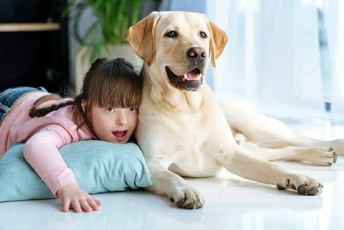 Heilpraktiker für tiergestützte Psychotherapie Ausbildung - Kind mit Down Syndrom und Labrador Retriever