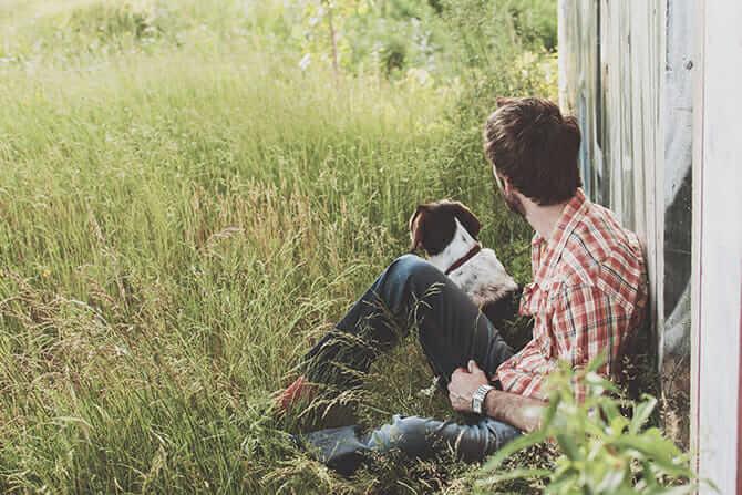 Hundeverhaltensberater Ausbildung - Hund sitzt neben seinem Besitzer im hohen Gras an einem Holzzaun