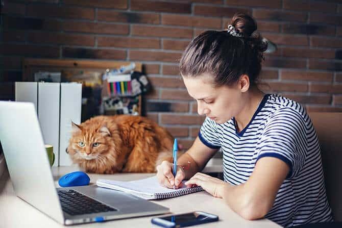 Katzenverhaltensberater Ausbildung - Katze liegt neben einer Studentin auf dem Schreibtisch während das Mädchen vor ihrem Computer sitzt und etwas aufschreibt