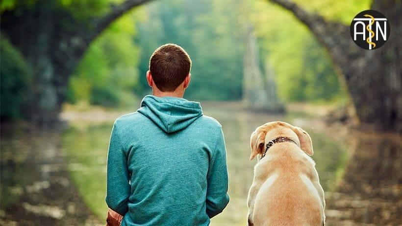 ausbildung zum heilpraktiker fuer psychotherapie der mensch hund beziehung