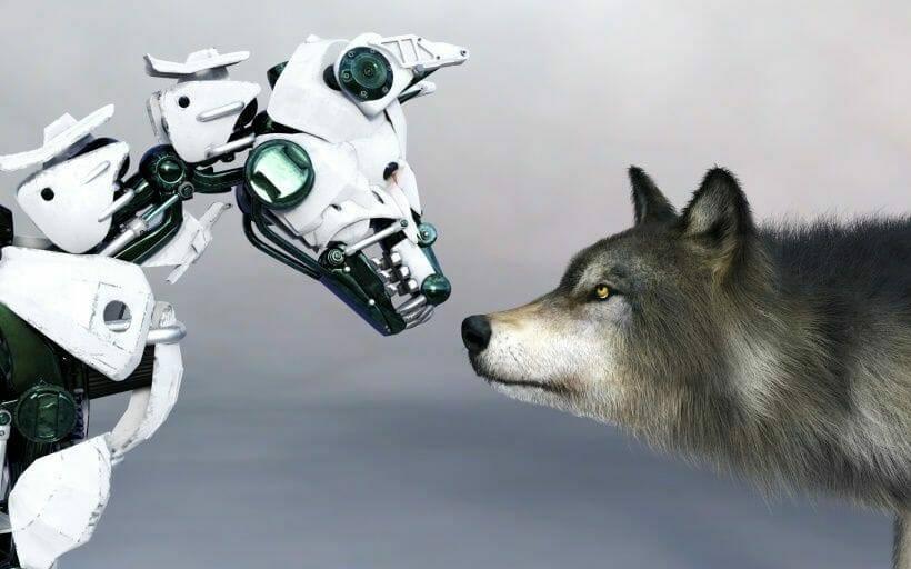 der hund der zukunft ein roboter