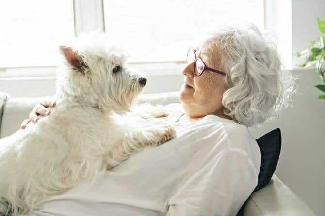 Heilpraktiker für tiergestützte Psychotherapie Ausbildung - Therapiehund und ältere Dame in weiß