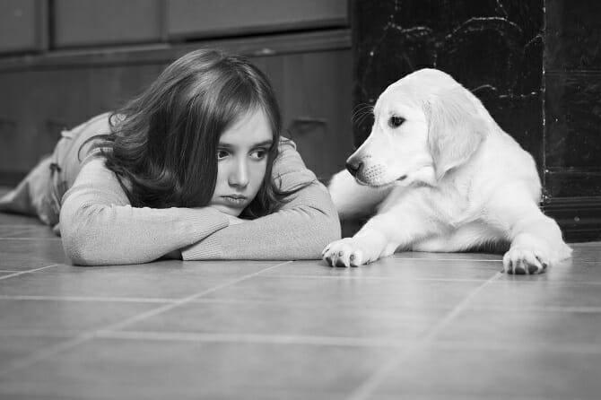 Heilpraktiker für tiergestützte Psychotherapie Ausbildung - trauriges Mädchen von Golden Retriever getröstet