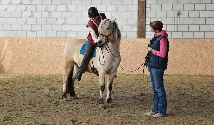 pferdeverhaltensberater ueber den beruf atn pferdeverhaltensberater reportage 2