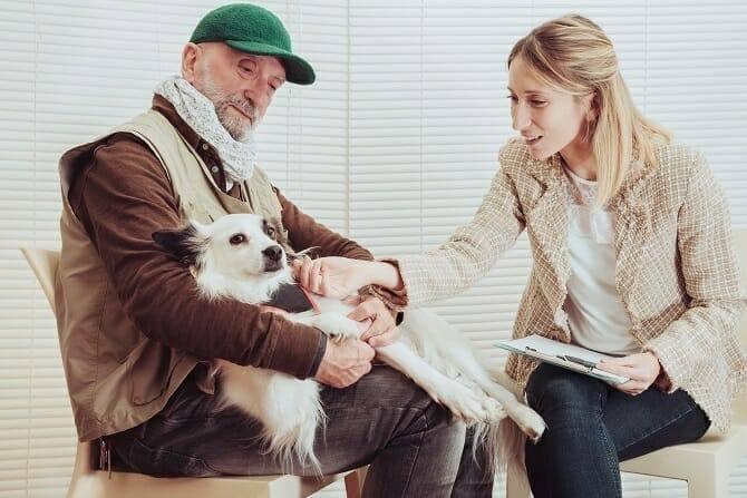 Psychologischer Coach Mensch Tier Beziehung Ausbildung - älterer Herr mit Hund beim Therapiegespräch