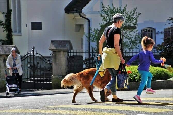 Psychologischer Coach Mensch Tier Beziehung Ausbildung - Mutter Tochter und Hund spazieren im Wohngebiet