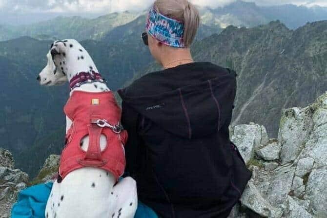Sportwissenschaften Hund Ausbildung - Frau und Dalmatiner auf dem Berg und genießen Panorama