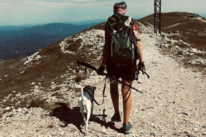 Sportwissenschaften Hund Ausbildung - Mensch und Hund erreichen den Gipfel